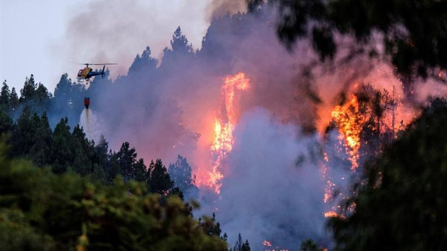Incendio forestal en Valleseco.