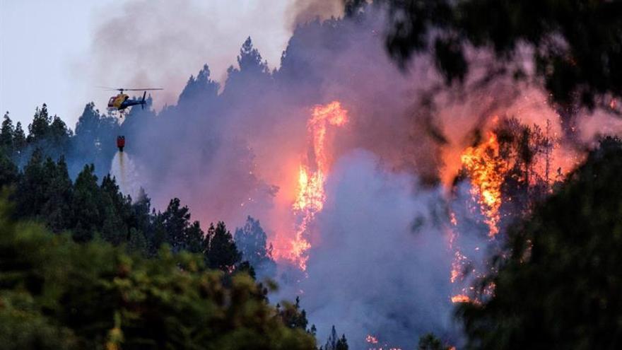 Incendio forestal en Valleseco.