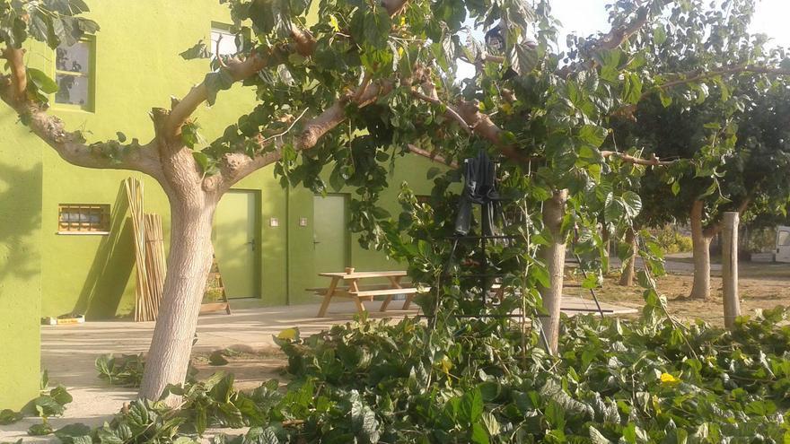 Instalaciones en Punt Eco.
