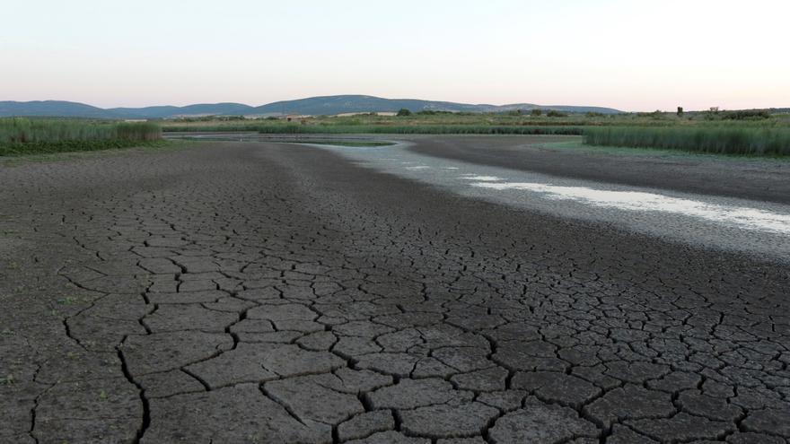 Más del 75% de España está en riesgo de desertificación, según Greenpeace