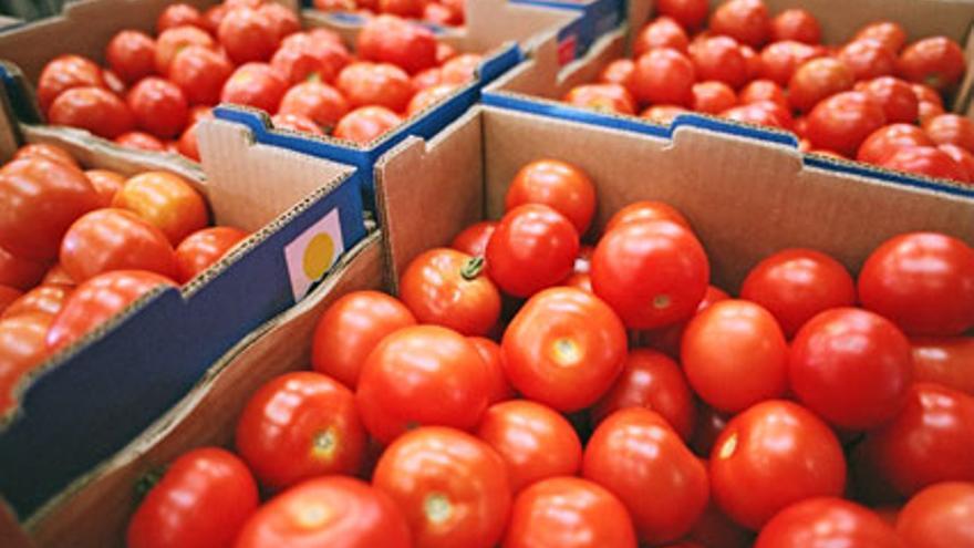 Tomate producido en Canarias