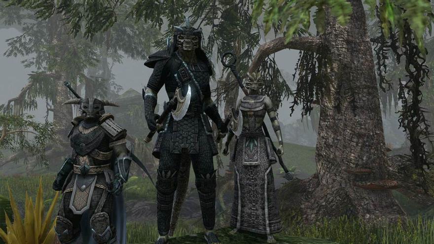 the elder scrolls online pc 11.jpg