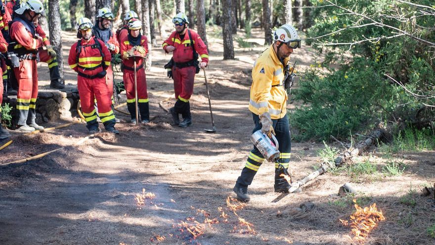 Ensayo de una quema técnica en los montes de Gran Canaria