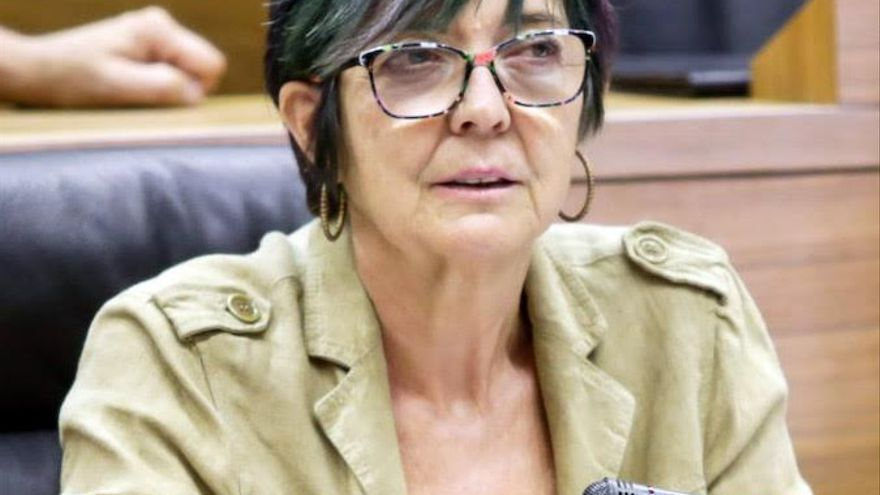 Tere Sáez, candidata por círculos al Consejo Autonómico de Podemos Ahal Dugu Nafarroa