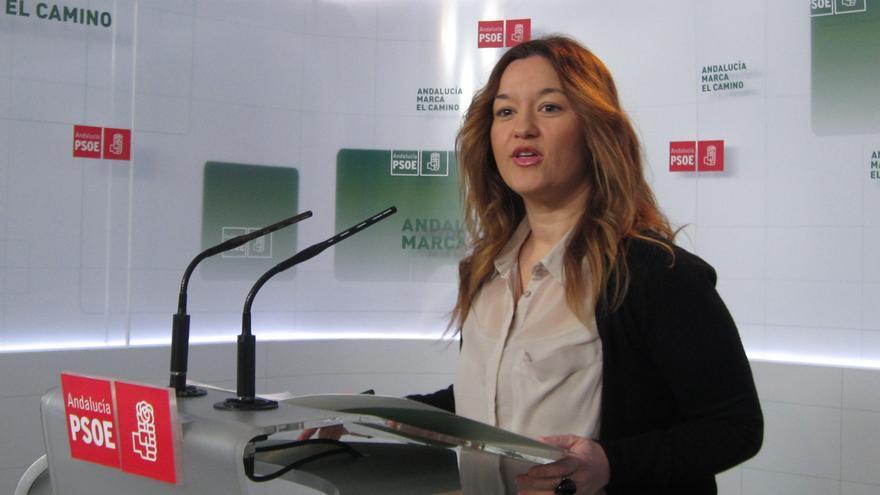 """PSOE de Andalucía recomienda a Wert que se acostumbre a las críticas porque """"quien siembra vientos, recoge tempestades"""""""