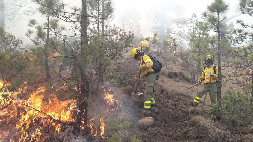 Tareas de extinción de personal de la Brifor, en el frente del incendio forestal del sur de Tenerife