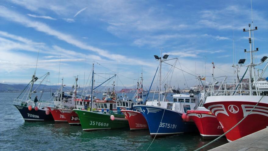 El Gobierno mantiene abierta la pesquería del jurel para la flota de arrastre de fondo en aguas lusas