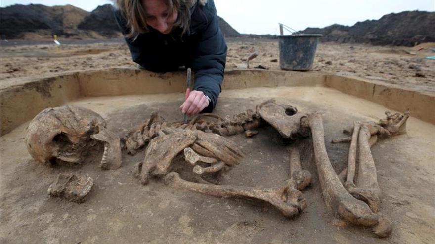 La mayoría de varones europeos viene de 3 linajes comunes de la Edad de Bronce