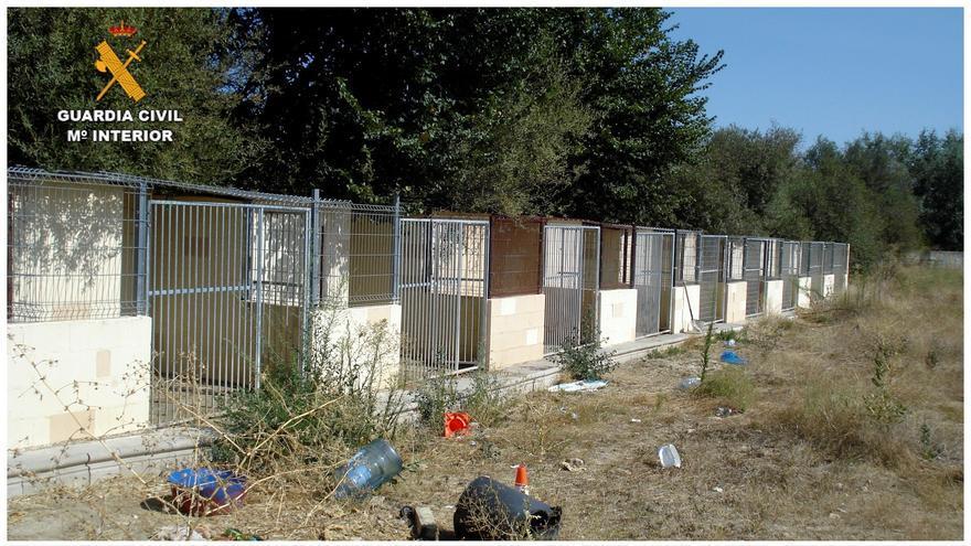 Dos detenidos por matar y maltratar a perros en una guardería de El Álamo (Madrid)