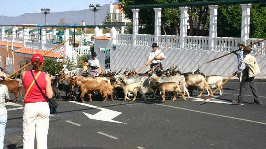 Imagen de archivo de la llegada de las gallofas.