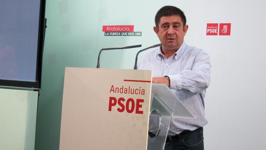 PSOE Jaén: lo urgente no es un congreso sino impulsar un nuevo proyecto que ilusione a la ciudadanía