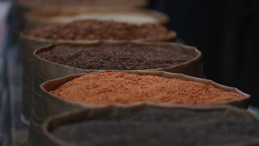 La FAO aboga por acciones de anticipación para evitar las crisis alimentarias