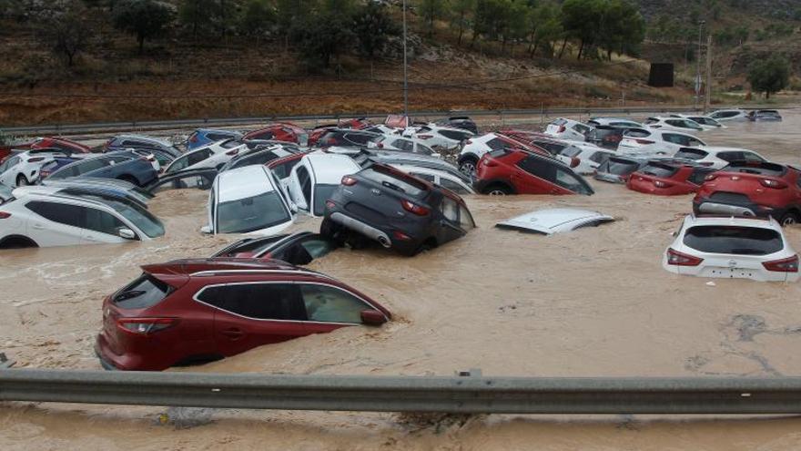 El río Segura comienza a desbordarse en la ciudad de Orihuela, sin heridos