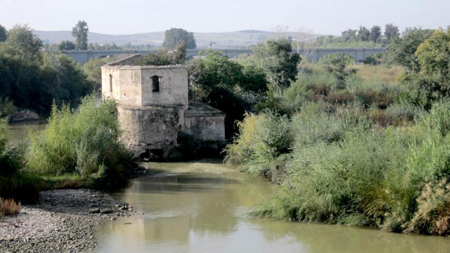 Molino de Enmedio, en Córdoba.