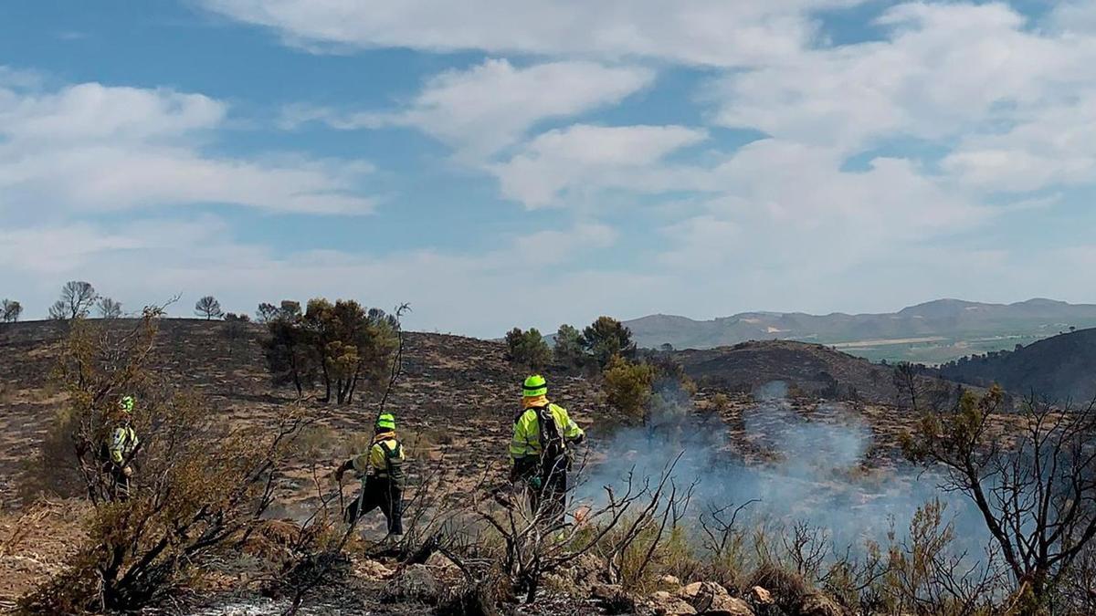 Incendio forestal en Liétor, Albacete
