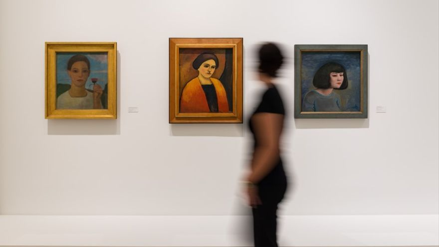 imagen de la exposición 'Picasso, Registros Alemanes' /FOTO: MPM