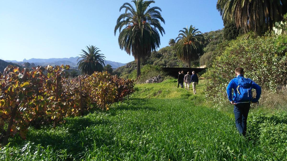 Rutas de turismo en Gran Canaria. (Masequera Almeida, HandMade Tours).