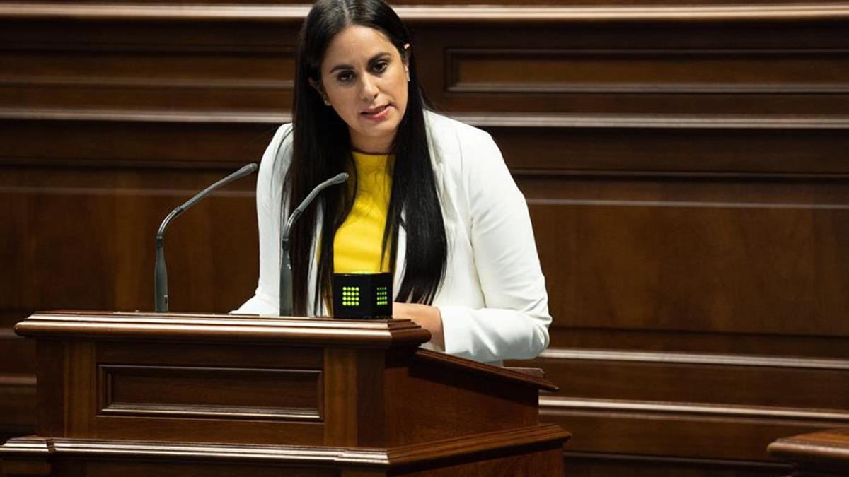La portavoz de Ciudadanos en el Parlamento de Canarias, Vidina Espino