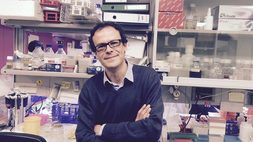Albert Pol, investigador del Instituto de investigaciones biomédicas August Pi i Sunyer