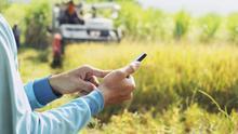 """""""El medio rural no es solo el pastor y el tractor, necesitamos telecomunicaciones"""""""