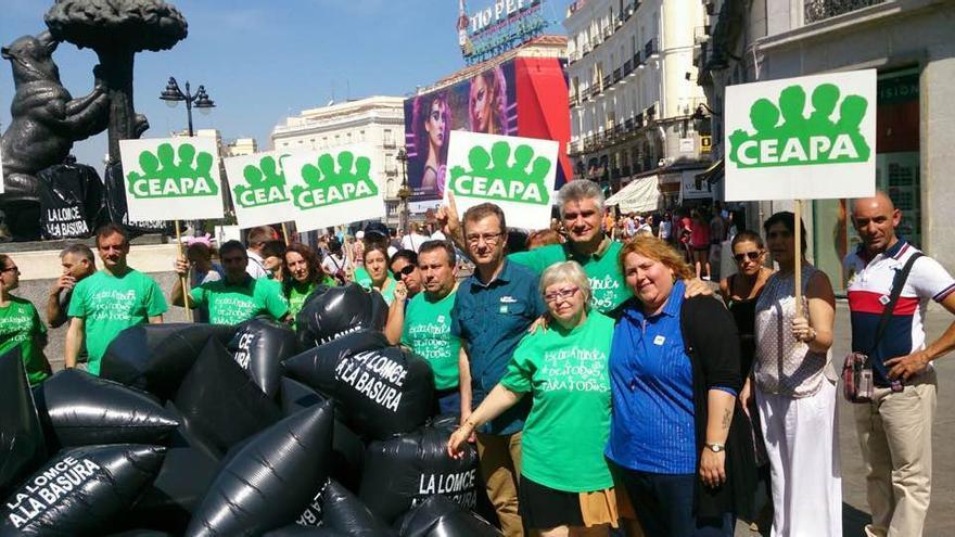 Protesta de CEAPA contra la LOMCE en la Puerta del Sol.