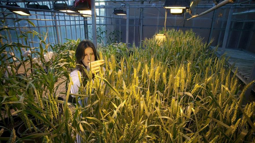 La UPNA oferta en el curso 2015-16 un Título Propio de Experto en Agroecología