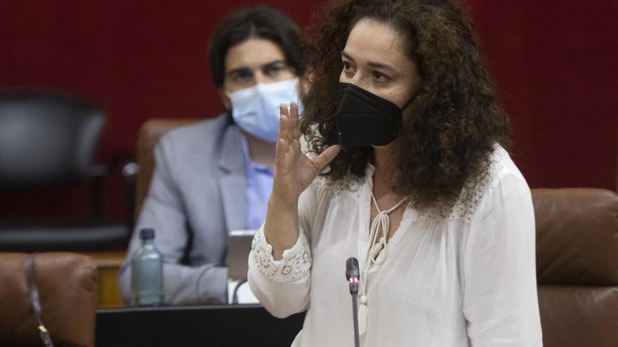 La portavoz del grupo parlamentario Unidas Podemos, Inmaculada Nieto, durante su intervención en el Parlamento.