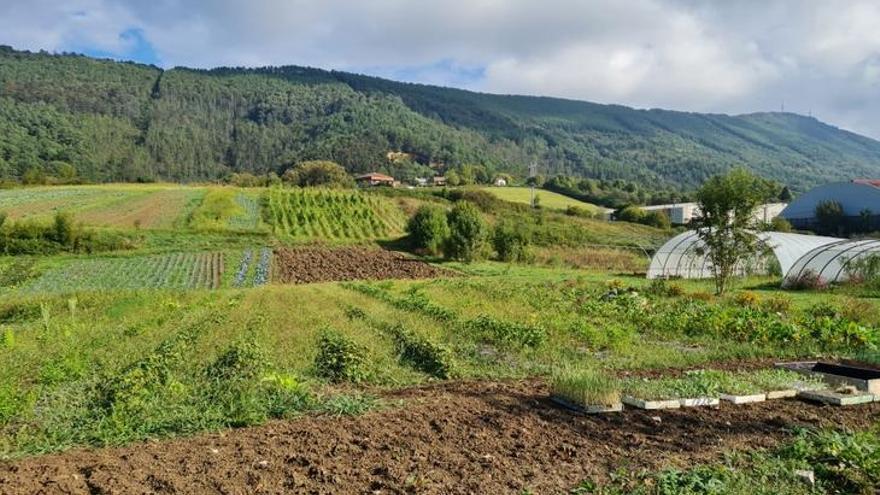 Terrenos del Fondo de Suelo Agrario de Gipuzkoa