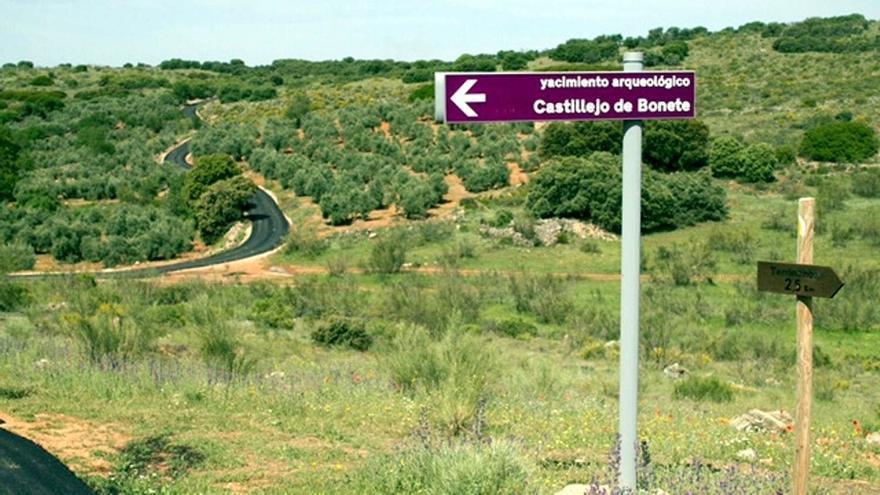 Acceso al yacimiento de Castillejo del Bonete de Terrinches (Ciudad Real)