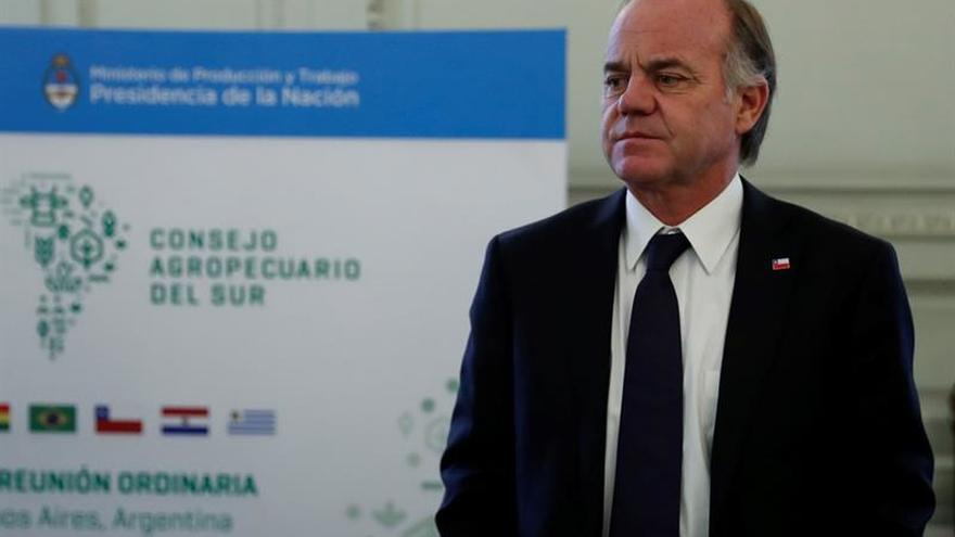 Chile prevé un gran acuerdo para levantar el sector forestal afectado por los incendios