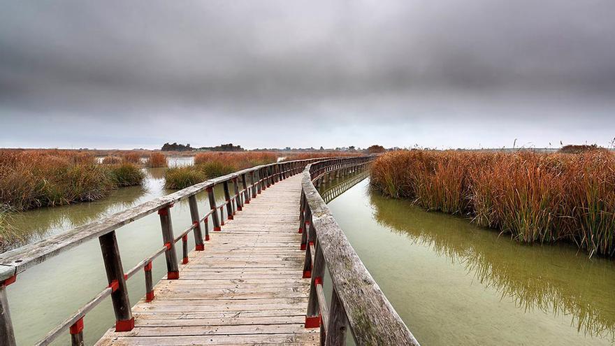 Pasarela de madera en las Tablas de Daimiel FOTO: www.clmturismoaccesible.com