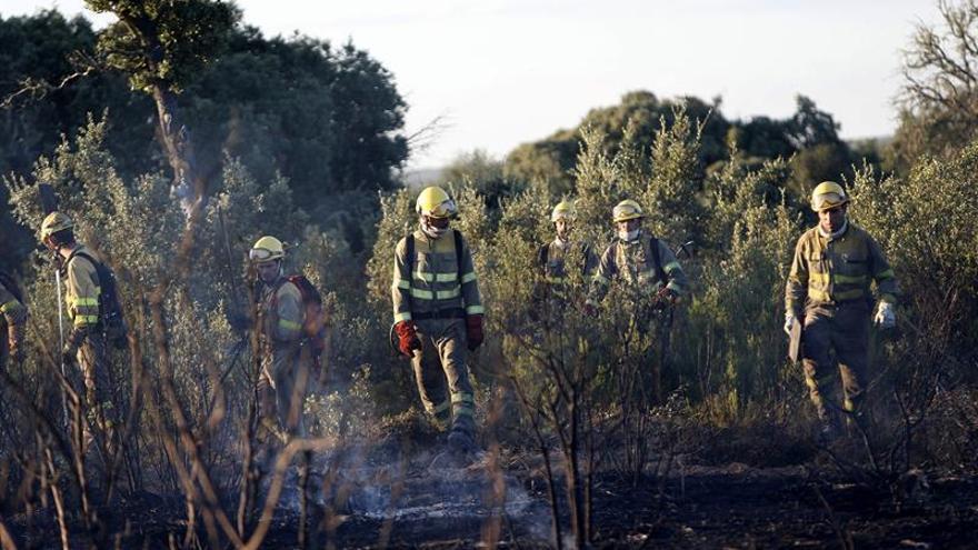 El incendio de Zamora sigue activo pero con menor riesgo tras intervenir la UME