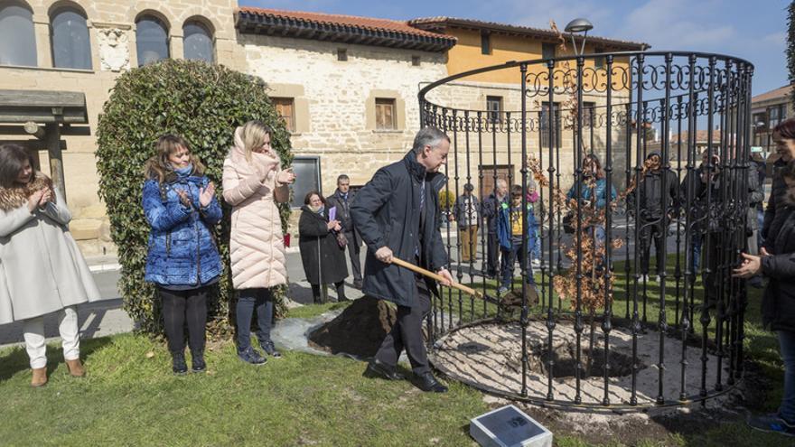 Urkullu, con el segundo retoño del árbol de Gernika