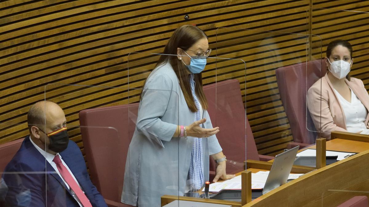 La portavoz adjunta de Vox en las Corts Valencianes, Llanos Massó, interviene en un pleno de la cámara autonómica.