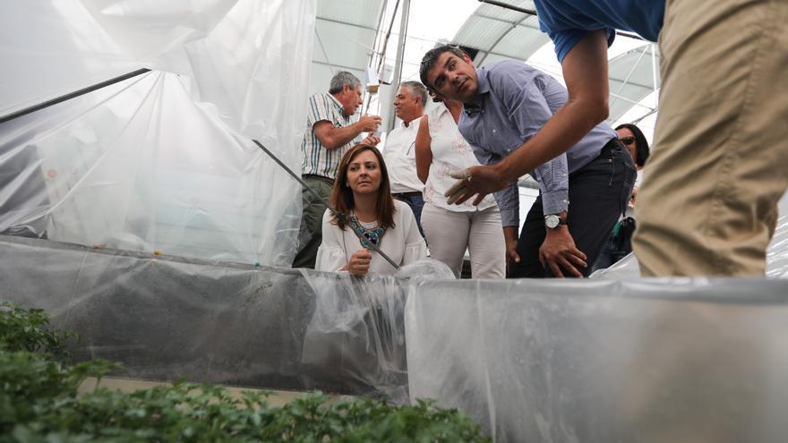Visita a La Aldea de los consejeros del Gobierno canario Narvay Quintero y Nieves Lady Barreto.