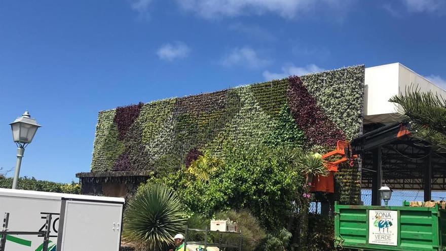En en la imagen, el jardín vertical de la Plaza de Las Glorias, en el barrio de Las Mancha, prácticamente concluido.