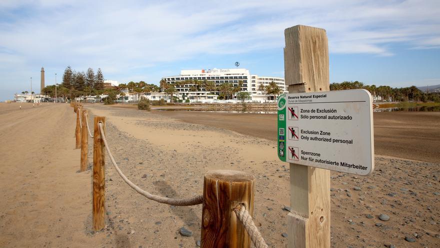 Charca de Maspalomas con el Faro y varios hoteles al fondo.