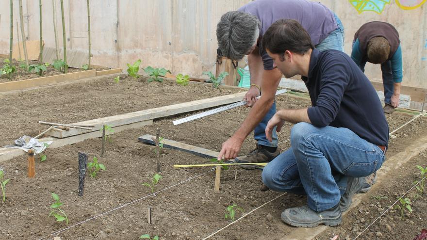 Técnicos trabajando en uno de los huertos urbanos sostenibles
