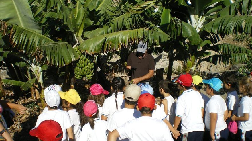 Alumnos aprenden sobre agricultura ecológica