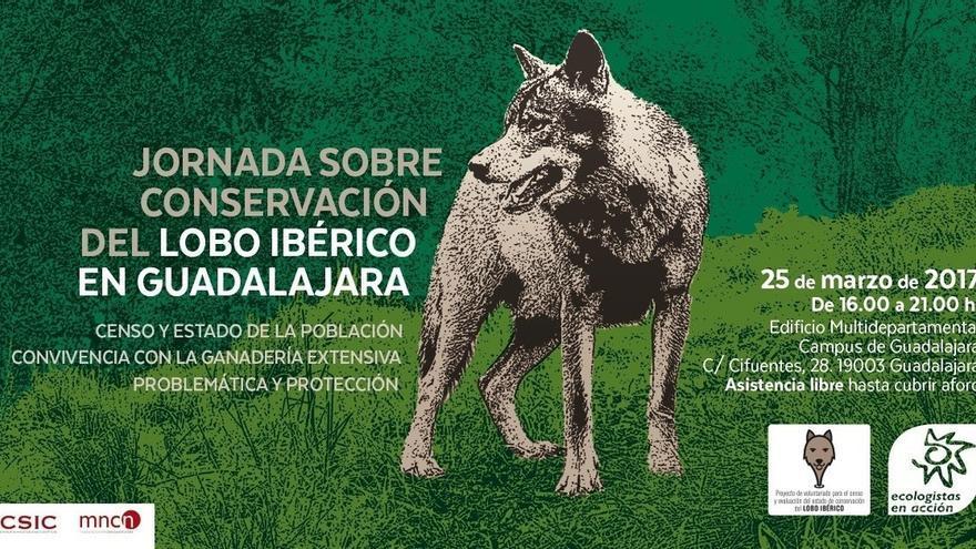 El Campus de Guadalajara acoge el 25 de marzo la Jornada sobre Conservación del Lobo Ibérico