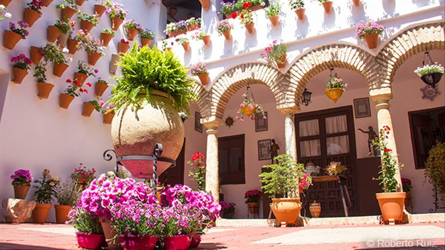 Los Patios De Cordoba La Espectacular Fiesta De Las Flores