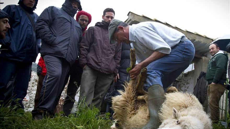 """Los pastores del siglo XXI van a """"la escuela"""""""