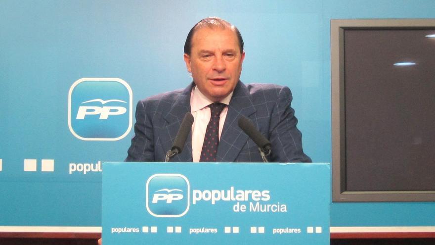 """Pujalte desconoce pagos del PP al presidente de Caja Madrid: """"¿En concepto de qué?"""""""