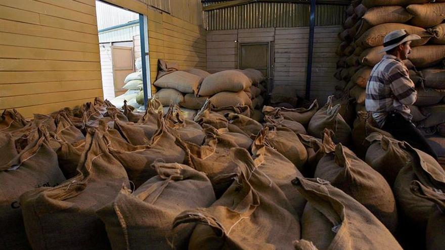 Las exportaciones brasileñas de café bajan un 25 por ciento en abril