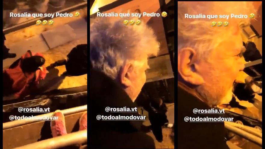 Momento en el que Pedro Almodóvar llama a la cantante Rosalía