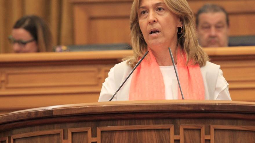 Ana Guarinso en las Cortes