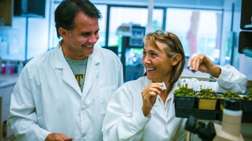 Hope Jahren y Bill Hagopian en su laboratorio