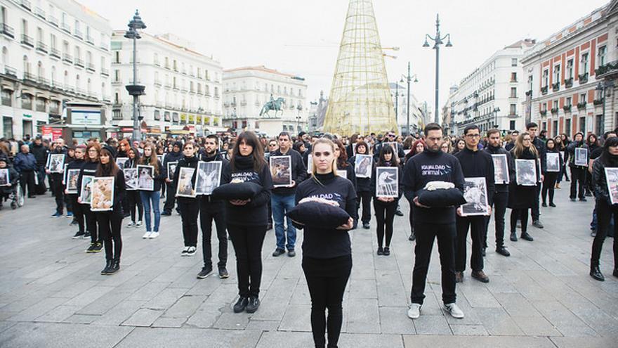 Acto por el Día de los Derechos Animales en la Puerta del Sol, Madrid. Foto: Igualdad Animal