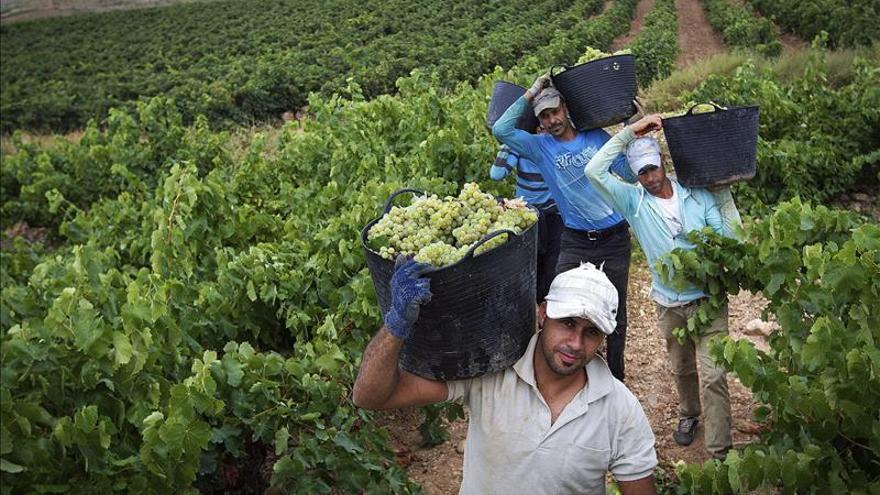 Los vinos de Rioja buscan mejorar su imagen entre los prescriptores de Rusia