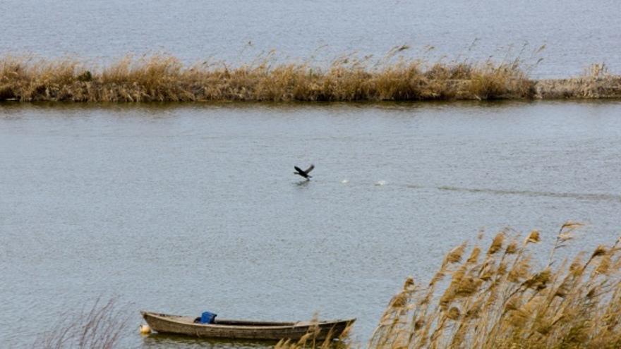 Vistas desde un paseo en barca de l'Albufera